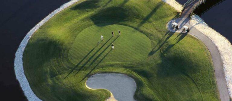 area-7-golf