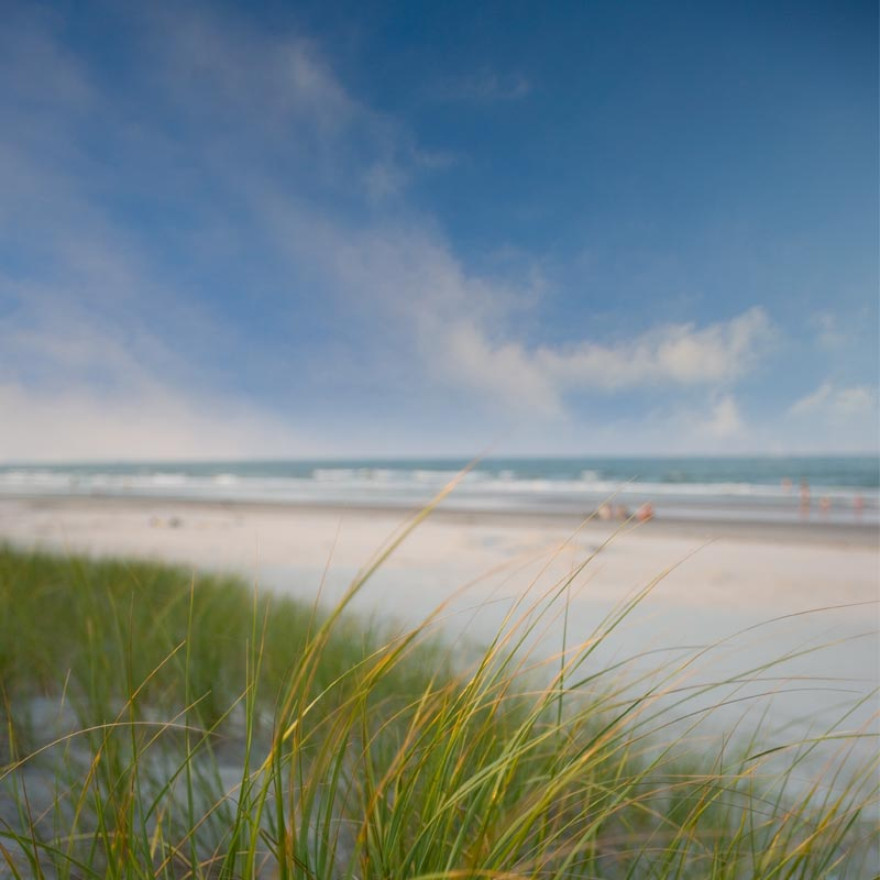 holden beach coastal living